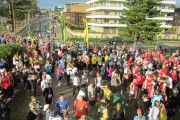 Volunteer call out for Sun Run on Sat 3rd Feb 2018